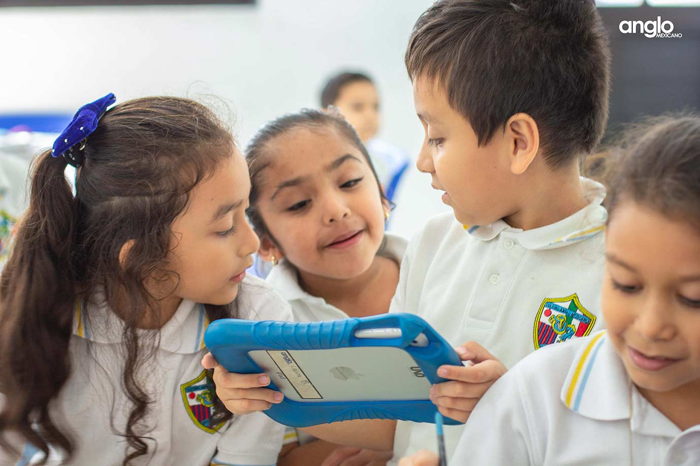 Colegio-Anglo-Mexicano-de-Coatzacoalcos---alumnos-primaria---elementary-school---actividades---colegios-en-coatza-5
